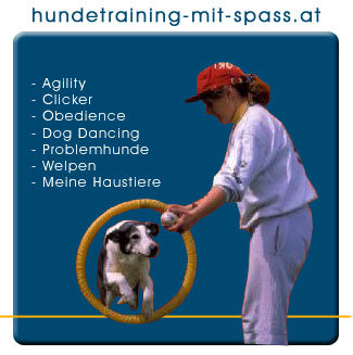 hundetraining-mit-spass.at